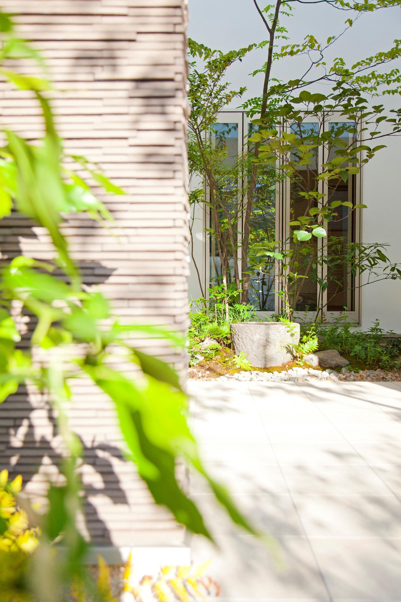緑豊かな中庭が空間をつなぐ、明るく開放感のある家