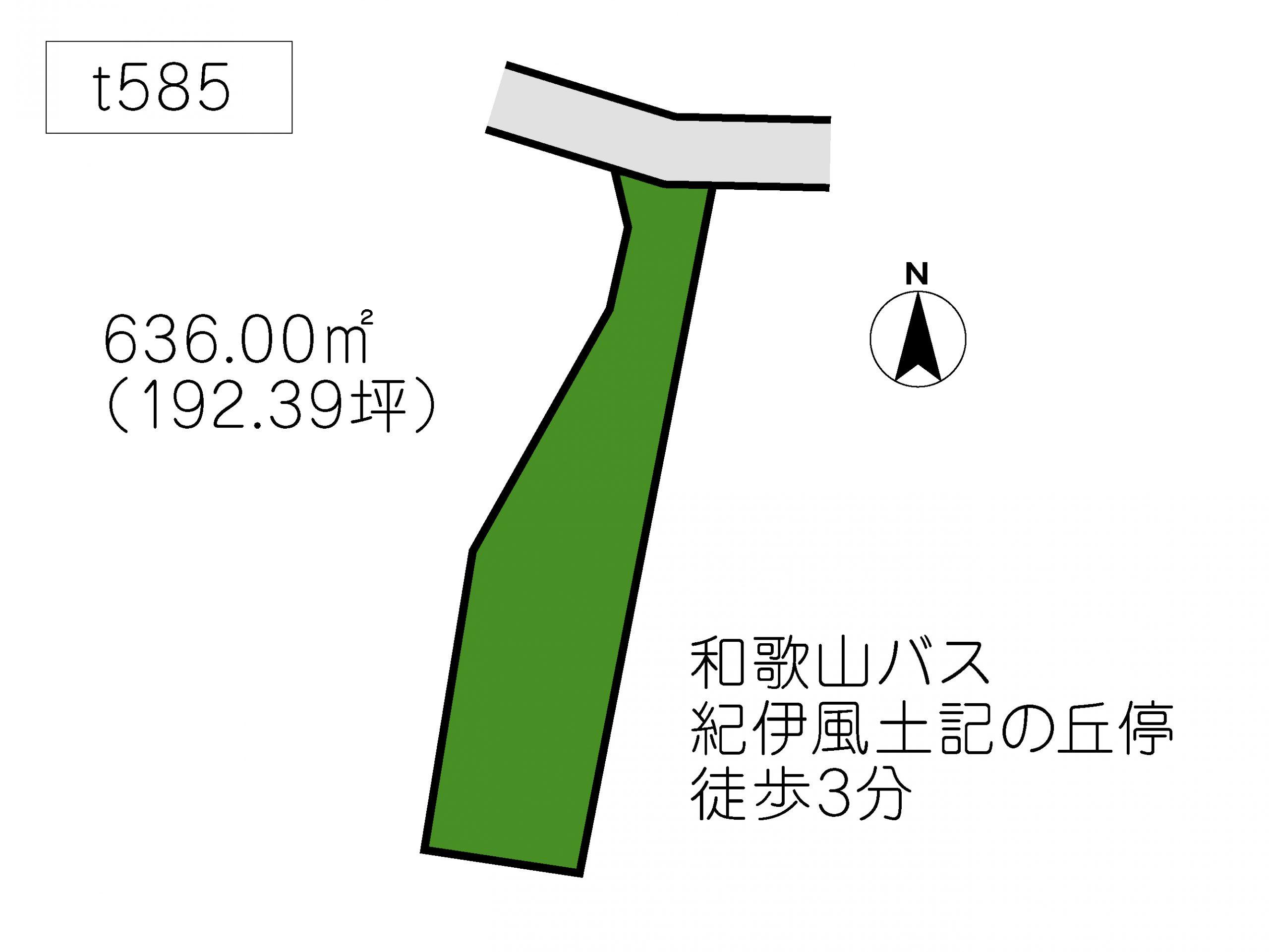 T585 岩橋