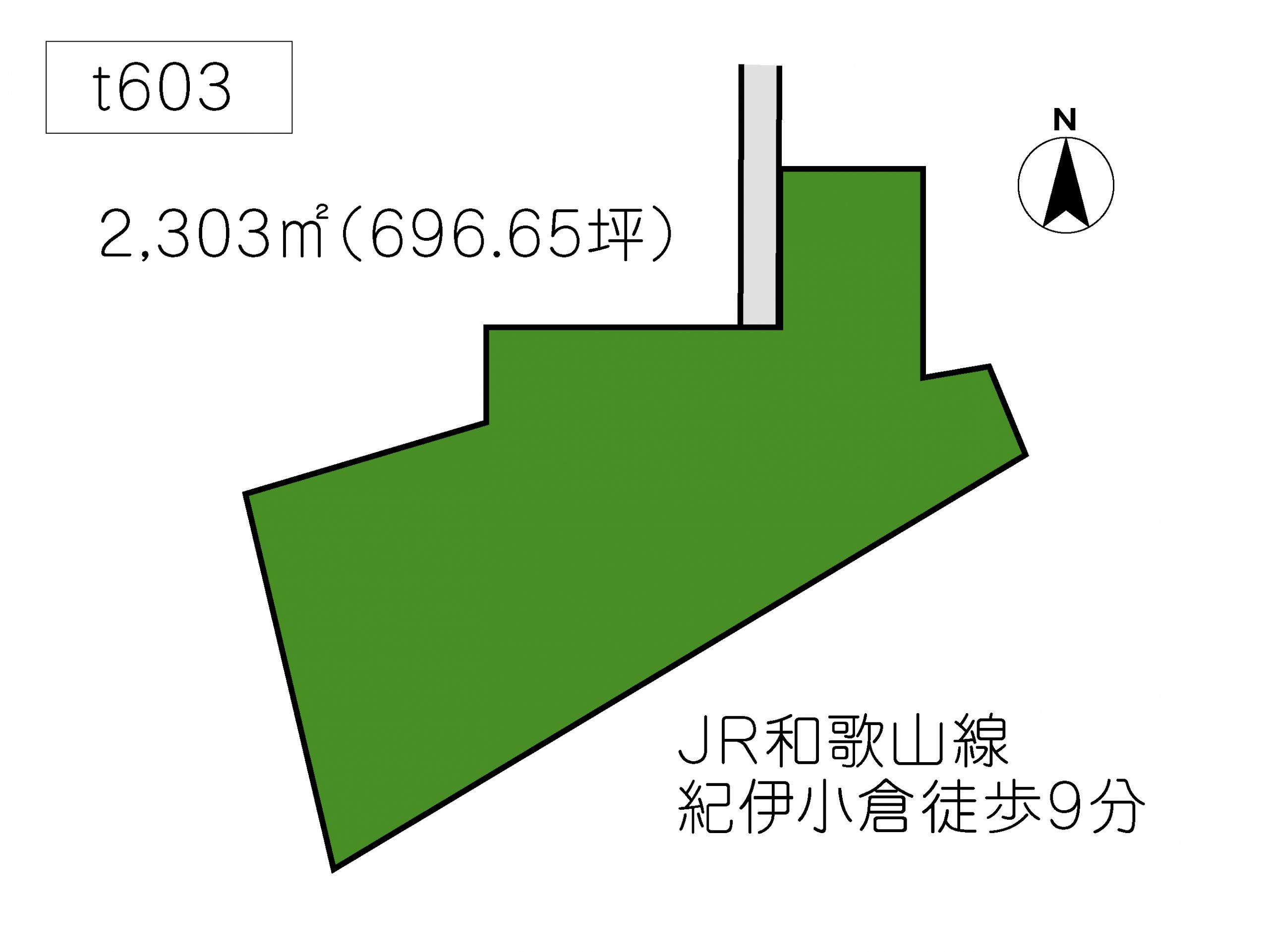 T603 下三毛